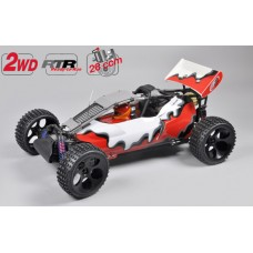 FG Buggy 2WD RTR colored body